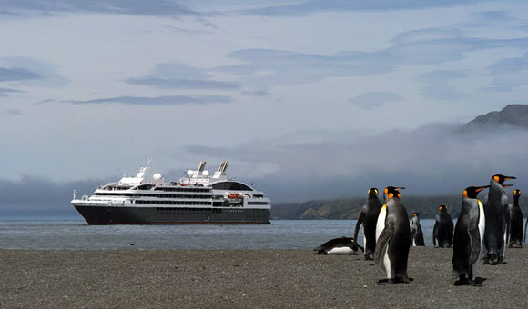 Explore the Arctic or Antarctic on an Expedition Cruise